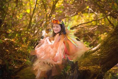 Amelia's Owlette Fairy Session