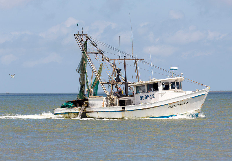The stately shrimp boat Capt. Gerald