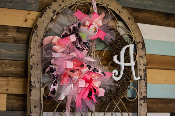 2016 11 26 Abigail Baby Shower - Tennessee