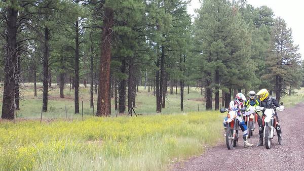 Flagstaff Dual Sport Ride July 2014