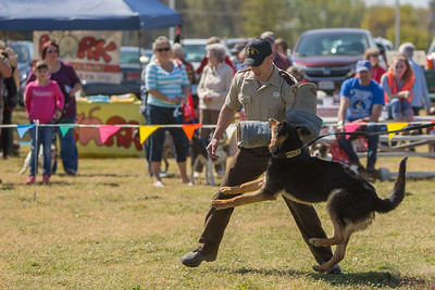 K9 Hero Day at Pole Green Park