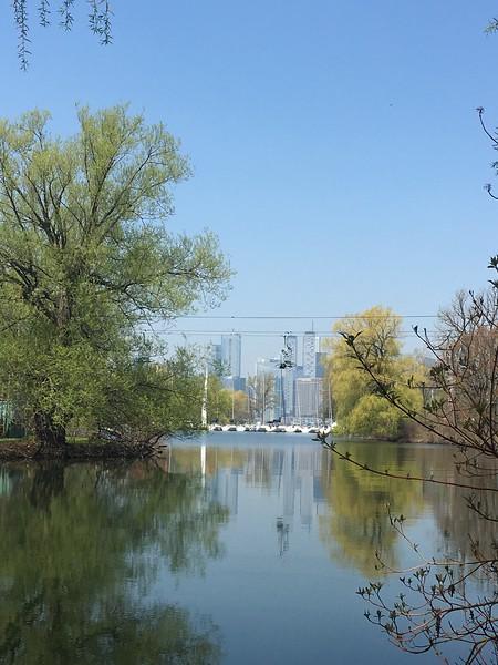 Toronto Is Park 5.jpg