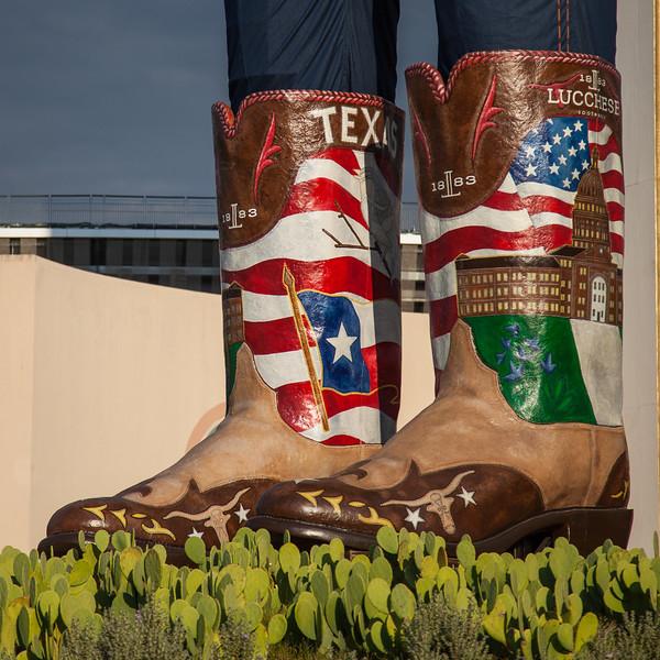 Texas Fair-11.jpg