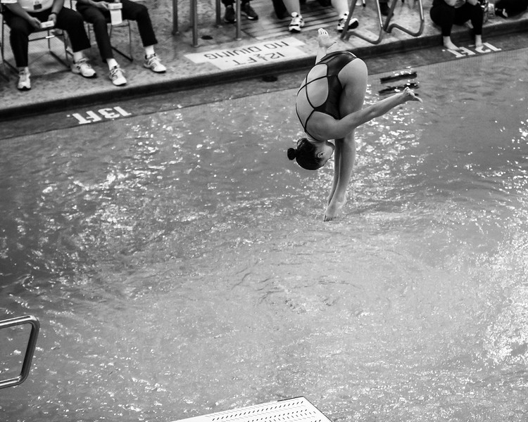 State Diving-26.jpg