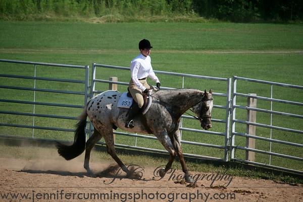 Open - Equitation, Pleasure, Show Hack