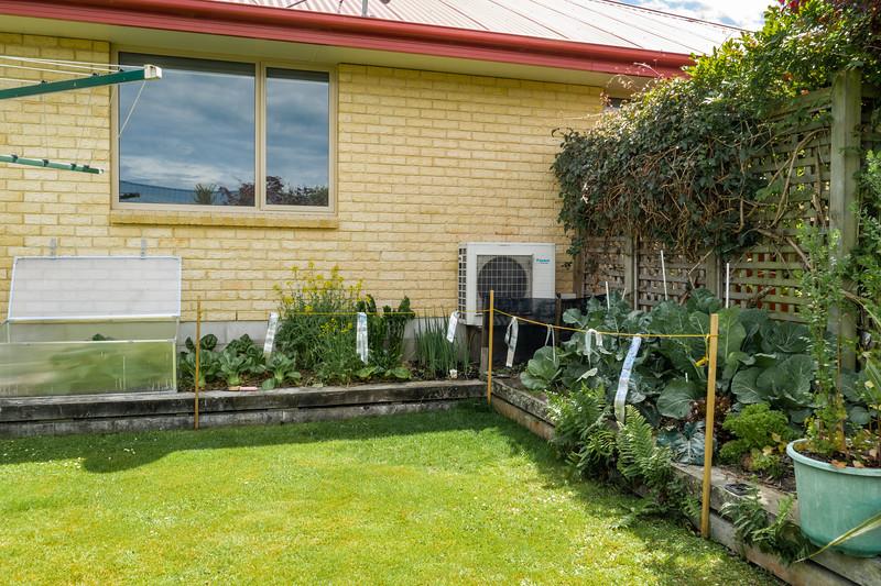 Garden091218-015.jpg