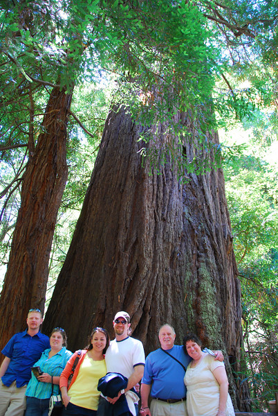 Chance, Ginger, Megan, John, Ted, and Margo at Muir Woods.