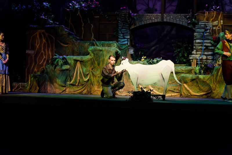 20150423 Into the Woods8821.jpg