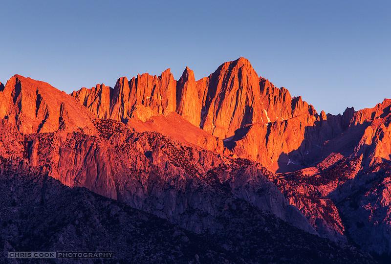 whitney-dawnlight.jpg