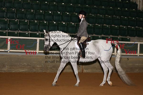 314 Sport Horse Walk Trot ATR