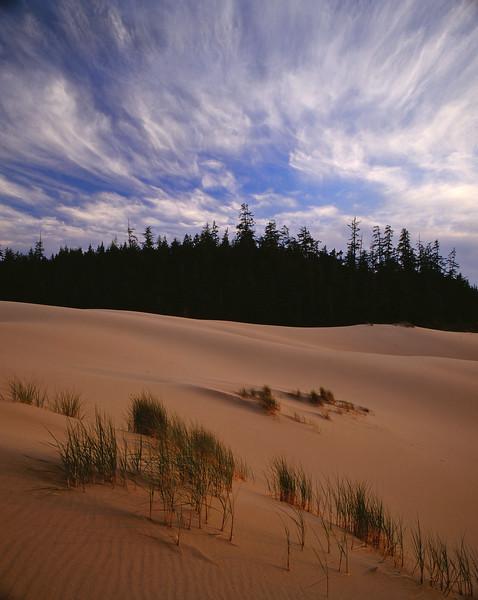 Dunes w grass, clouds.jpg