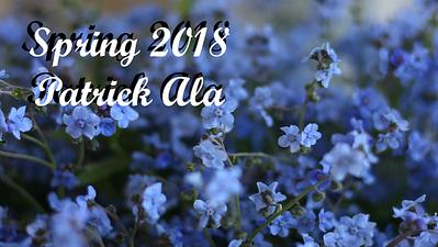 Spring 2018 - Patrick Ala
