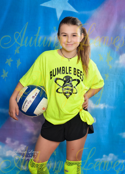 Hyer Bumble Bees - 4G