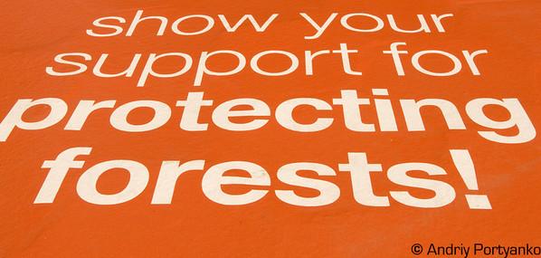 ProtectingForest.jpg