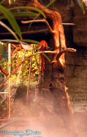 Cleveland Zoo 2005