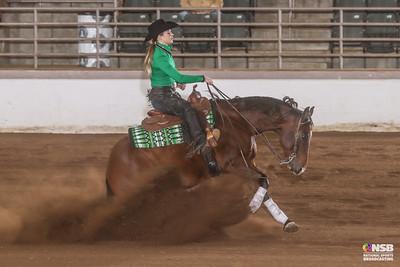 Friday Novice Horse