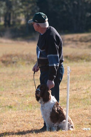 Maitland Dog Obedience Winter 2018