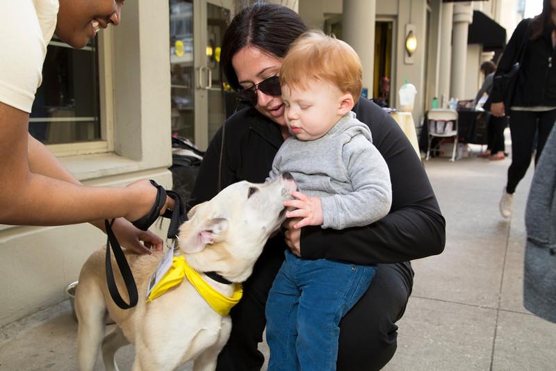 Dog and Toddler (20140518-AWT-GC-143).jpg