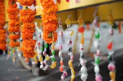 The Krishna Parade
