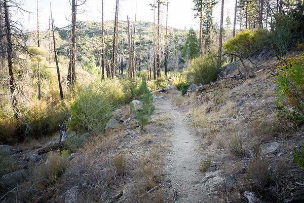 2018-09-29 - National Public Lands Day, Vetter Mountain