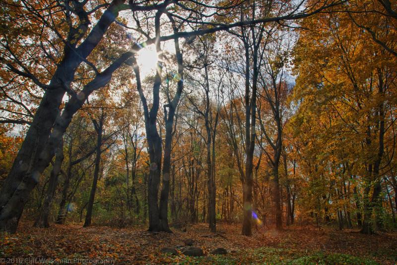 Trailside Park-7328_HDR.jpg