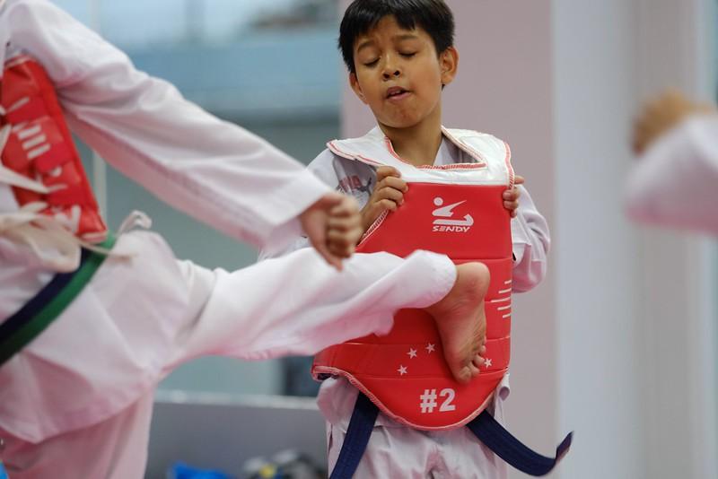 INA Taekwondo Academy 181016 062.jpg