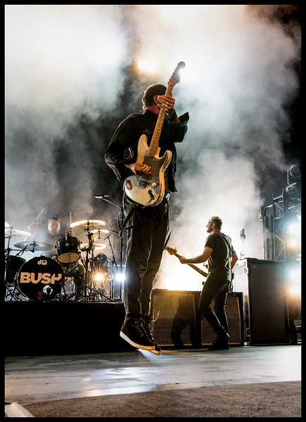 Bush at The Warfield by Patric Carver 13.jpg