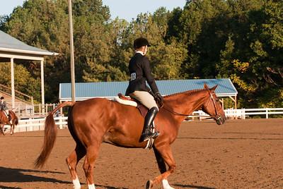 Class 207 - Hunter Pleasure Horse Classic