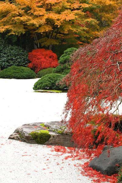 Portland Japanese Garden  11-11-11  3535.jpg
