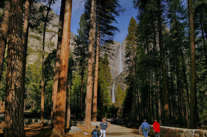 Main trail to Lower Yosemite Falls. February 2010