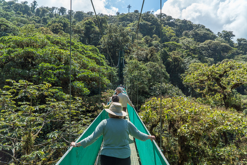 Costa Rica 2015-4157.jpg