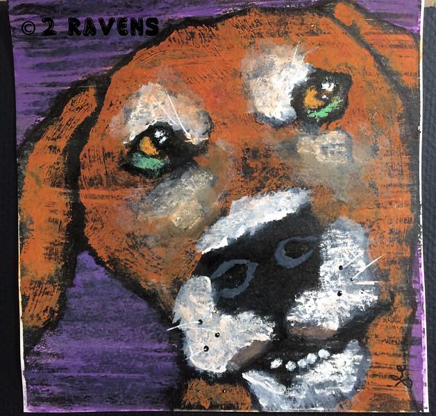 sketchbrowndoggiepurple6x6c.jpg