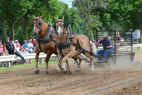 2014 BUD WARD MEMORIAL HORSE PULL