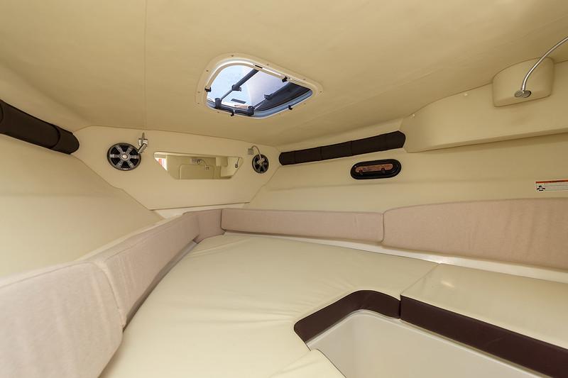 2020-Sun-Sport-250-Europe-cabin-1.jpg