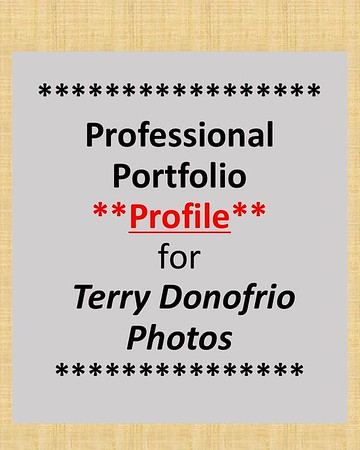 Professional Portfolio Profile Document