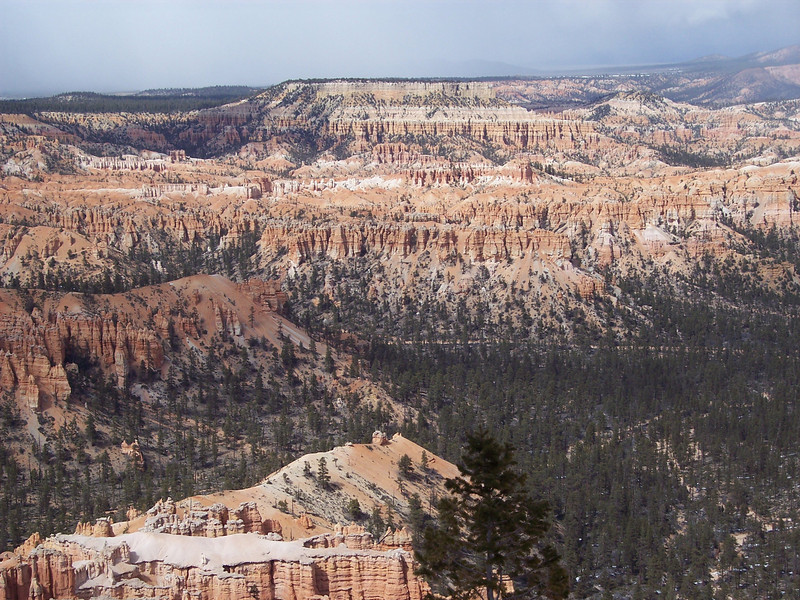 Bryce Point 3.jpg