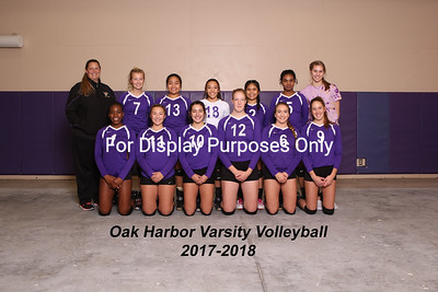 OH Volleyball 2017-2018