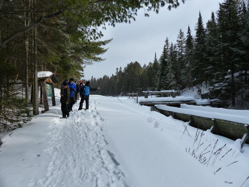Katsu Sakuma leading interpretive tour along Logging Museum trail