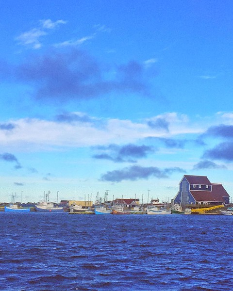 It_may_be_cold_in_Toronto_but_it_s_warm_with_sunny_skies_in_Newfoundland.__TownofBonavista.jpg