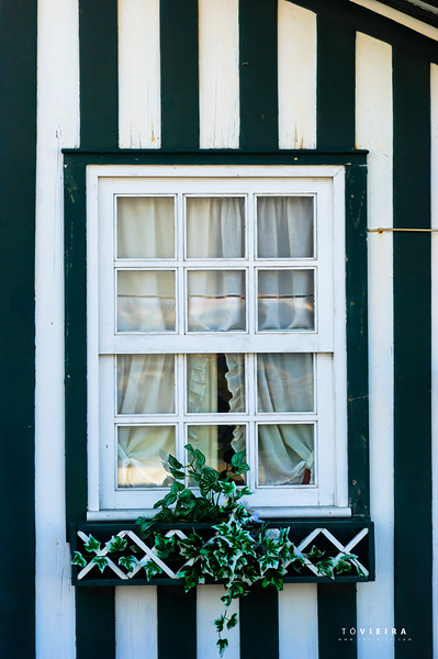 Costa Nova - Janelas e Portas