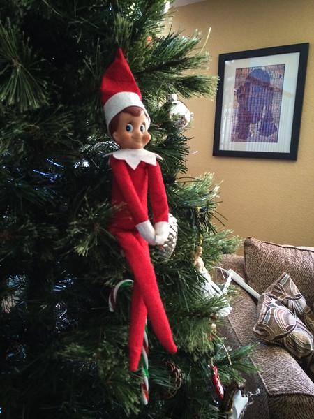 2014.12.02 - Ellken, the elf on a shelf