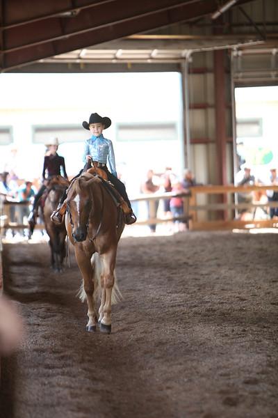 Small Fry Horsemanship and Pleasure