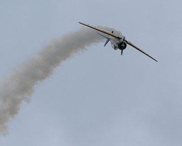 Reading Air Show 2011