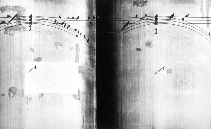 Birds on a Wire_print.jpg