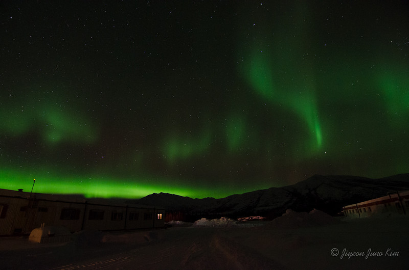 USA-Alaska-Coldfoot-Aurora-3368.jpg