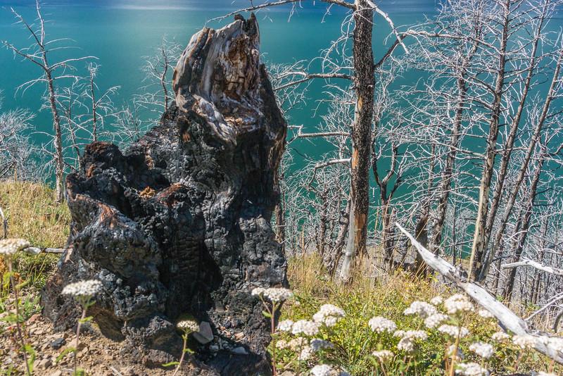 Lake-Butte-3.jpg
