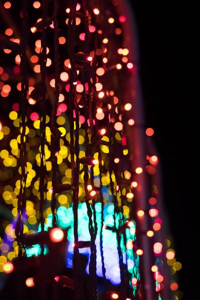 hudsongardenxmaslights-0924.jpg