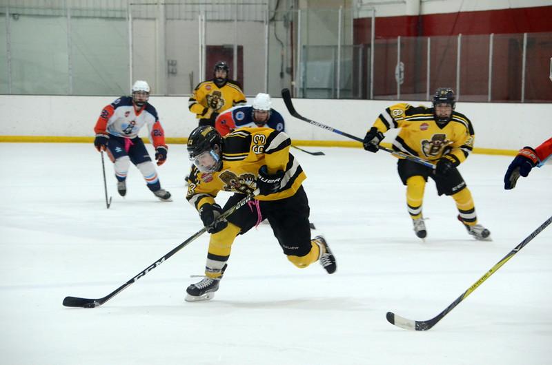 180109 Junior Bruins Hockey-032.JPG