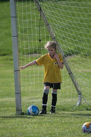 ASLA Soccer Fall 2007 - U7G-5