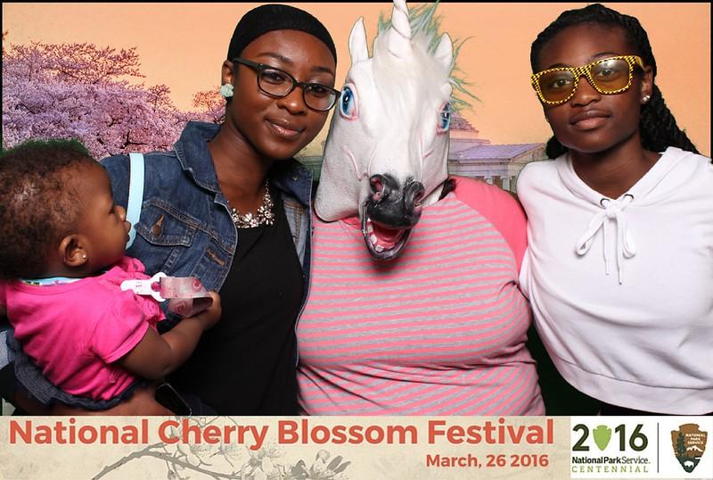Boothie-NPS-CherryBlossom- (333).jpg